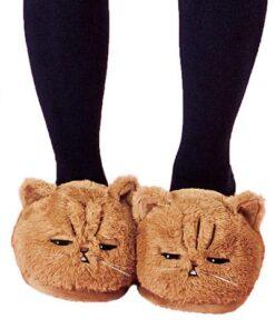 chausson chat suspicieux