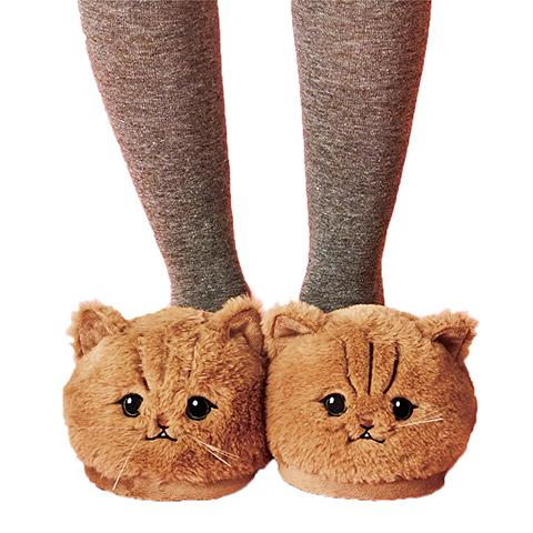 chausson chat yeux ronds