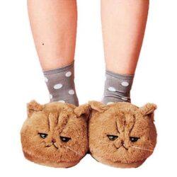 chausson chat roux grognon