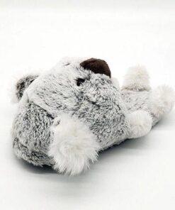 chausson koala vue arriere