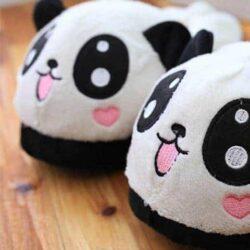 chausson panda zoom