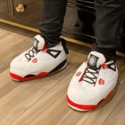 chausson-sneakers-jordan-fire-4-4
