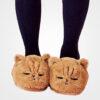 chausson chat roux endormi