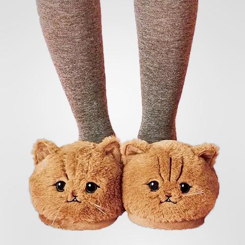 chausson chat roux mignon